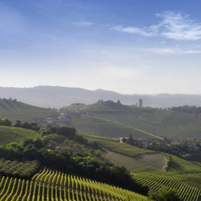 Barolo & Barbaresco wine tasting tour