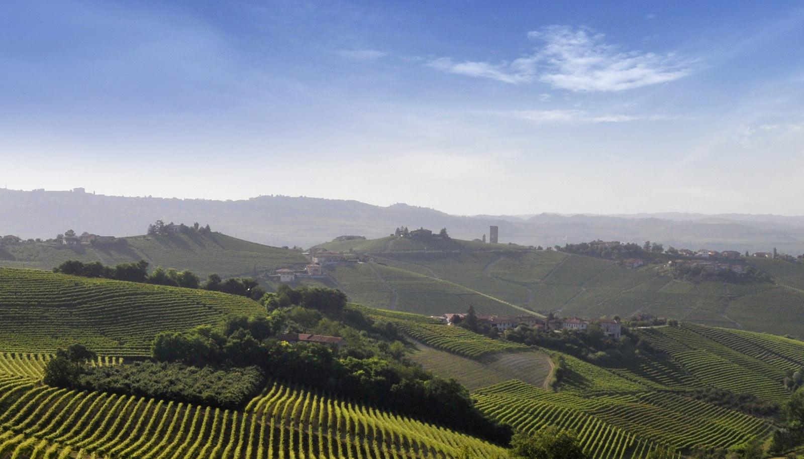 Barolo & Barbaresco wine tasting tour
