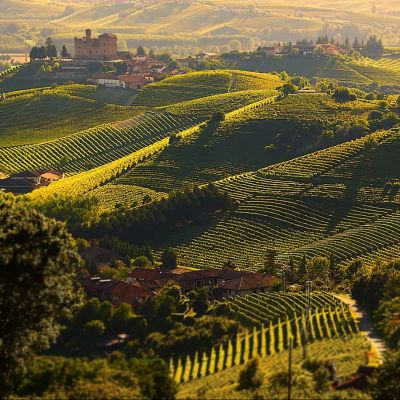 Discover the Unesco vineyard landscapes