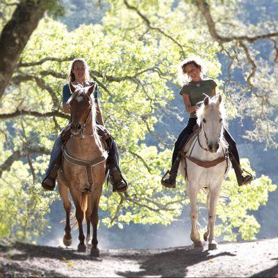 Passeggiata a cavallo in Alta Langa!