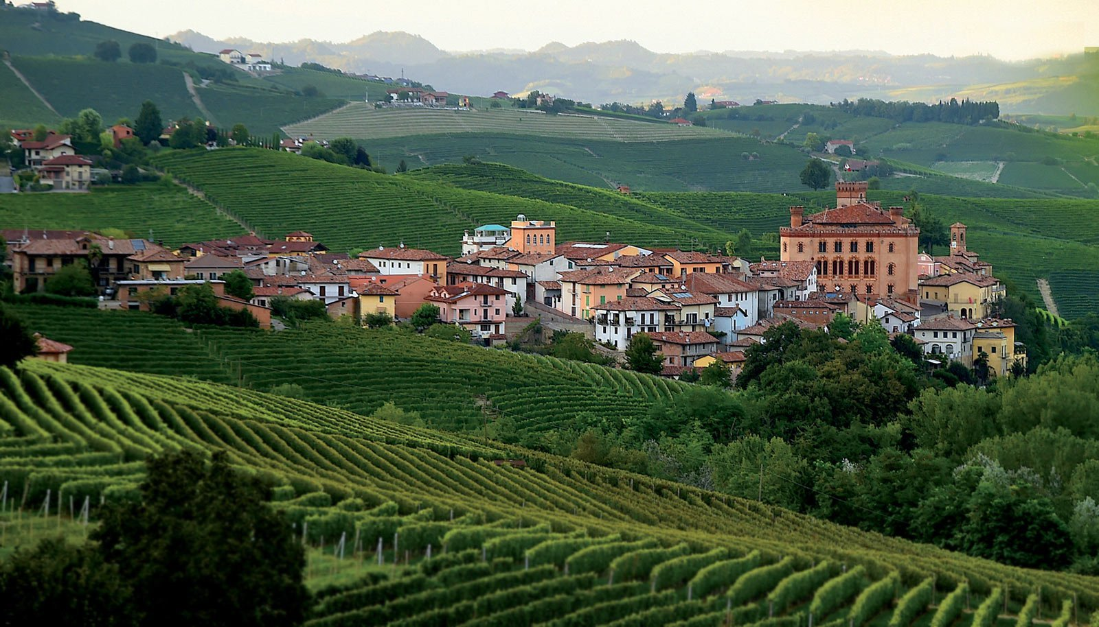 The Langhe as a gift