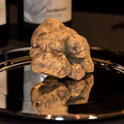 Alba White Truffle Auction