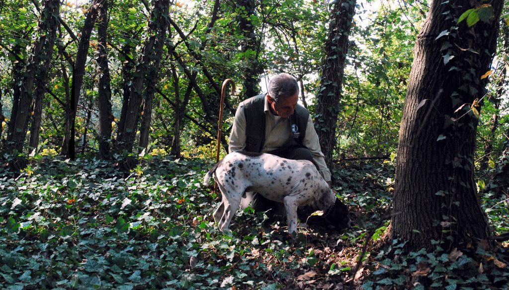 Truffle Tour in the Langhe - Langhe Experience tours and events